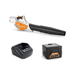 toptopdeal de Stihl BGA 57 Compact Battery Blower with AK 20 and AL 101